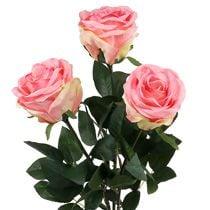 Vaahtoruusu ja koristeelliset ruusut