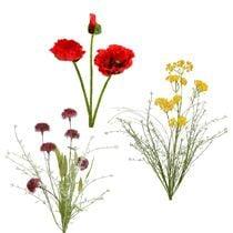 Puutarhan kukka ja niitty kukka
