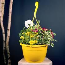 Kukka liikennevalo 25cm valkoinen