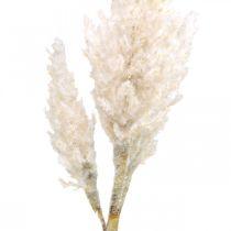 Pampas Grass valkoinen kerma keinotekoinen kuiva ruoho Deco 82cm