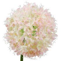 Allium kerma-vaaleanpunainen Ø15cm L70cm