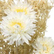 Kukkakimppu Keinotekoinen Asters ja Gypsophila Beige, Valkoinen 43cm