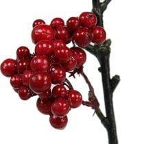 Marjahaara punainen 50cm 4kpl