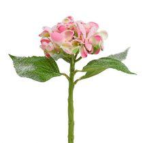 Hortensia vaaleanpunainen lunta 33cm 4kpl