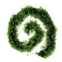 Puksipuu seppele vihreä L170cm