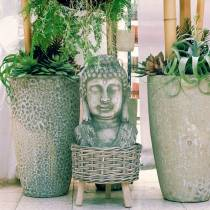 Buddhan pää H55cm