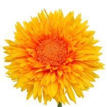 Chrysanthemum Teddy 63cm kullankeltainen