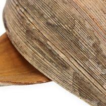 Kookospähkinän kuori kookospähkinän lehti luonto 25kpl