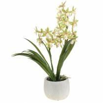 Orkidea Cymbidium Green ruukussa Keinotekoinen H46cm