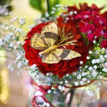 Sulka Perhonen Clip Golden Spring Koriste 6cm 10kpl Set