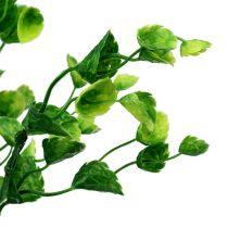 Koristeellinen mintunhaara vihreä L74cm 6kpl