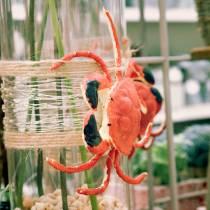 Deco syöpä punainen 15cm