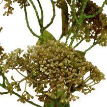 Koristeellinen oksa sedum kasvi vihreä 58cm