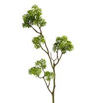 Koristeellinen haara vihreä 80cm