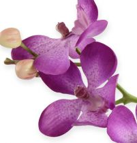 Orkidea lila 38cm