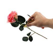 Ruusunupinpoistaja veitsellä