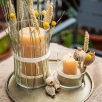 Värilliset kynttilät hunajavärit Eri kokoja