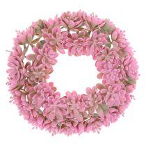 Echeveria-seppele vaaleanpunainen Ø18cm 4kpl