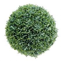 Echeveria pallo keinotekoinen vihreä Ø18cm
