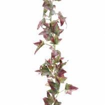 Ivy-seppeleiden vihreä, viininpunainen 182,5 cm