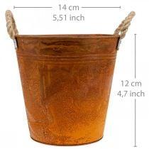 Kasviruukku, syksyn koriste, metallinen ruukku ruostumattomasta teräksestä Ø14cm H12cm