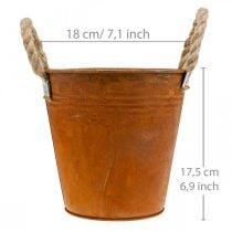 Kasviruukku ruostumattomasta teräksestä, metalliruukku, syyskoriste Ø18cm K17,5cm
