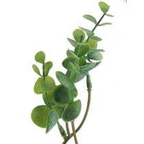 Eukalyptus oksa keinotekoinen vihreä 37cm 6kpl