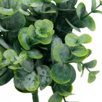 Keinotekoinen Eukalyptus häät koristelu Eukalyptus oksat vihreä H26cm