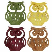 Streudeko pöllöt puuta valikoituja värejä 4cm 72kpl