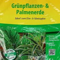 FRUX Vihreä kasvi- ja palmumulta 5l