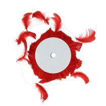 Jousilanka punaisella 10m