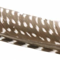 Höyhenet luonnolliset 18 - 24cm 10g