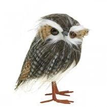 Pöllö koristeluun, syksy, koristelintu, metsäkoriste H21cm