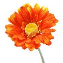 Gerbera Oranssi Ø10cm L55cm 6kpl