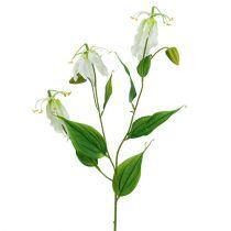 Gloriosa valkoinen keinotekoinen 84cm 3kpl