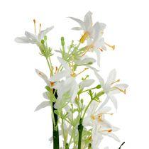 Ruohopensas kukilla vihreä, valkoinen 3kpl