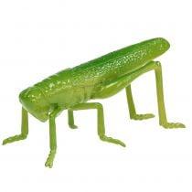 Heinäsirkka vihreä 11cm 1kpl