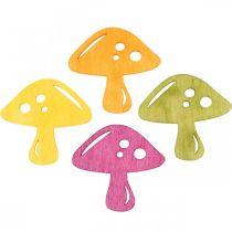 Scatter koristelu sienet, syksyn koristelu, onnekkaat sienet koristeluun Oranssi, keltainen, vihreä, vaaleanpunainen H3,5/4cm W4/3cm 72St