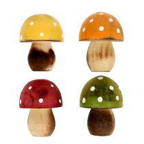 Puiset sienet ripottele koriste 3 cm valikoituja 24kpl