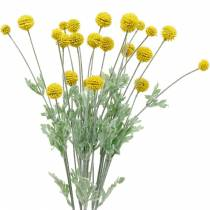 Drumstick keltainen keinotekoinen Craspedia silkkikukkia