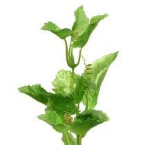 Humala oksa 70cm vihreä 2kpl