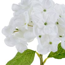 Hortensia 35cm Valkoinen