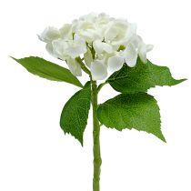 Hortensia 33cm valkoinen 1p