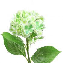 Hortensia keinotekoinen vihreä, valkoinen 68cm