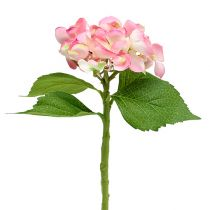 Hortensia vaaleanpunainen 33cm