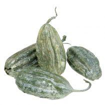 Luffa-hedelmävihreä 14cm 10p