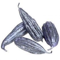 Luffa-hedelmävioletti 14cm - 20cm 10kpl