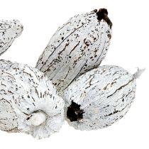 Kaakaopalat pesty valkoisella 15kpl
