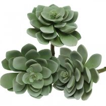 Keinotekoinen sukkulentti Deco Keinotekoiset kasvit vihreä 11×8,5cm 3kpl