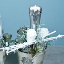 Säilötyt ruusut keskikokoiset Ø4-4,5cm valkoiset 8kpl